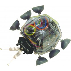 C-9812  ROBOT LADYBUG