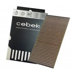 EK-1018.10 Circuito impreso