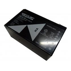 C-0351  SOLAR BATTERY AGM...